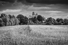 Ruin on the hill (Anthony P26) Tags: barrowmump category england flickrpost landscape places somerset travel uk unitedkingdom british greatbritain britain english countryside rural fields farming agriculture hill ancientcountryside ruin church trees sky greyclouds cloudy cloudysky crops travelphotography canon canon70d canon1585mm outdoor monochrome field