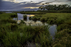 Sunset at Fenwick Island, Delaware (crabsandbeer (Kevin Moore)) Tags: oc audrey august birds landscape oceancity ponies summer water wildlife sunset rain weather easternshore delaware maryland fenwickisland nature reflection grass trees clouds