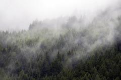 (Boris Zhigun) Tags: eurostars fujifilm xe1 xmount tyrol alps austria mountains forest trees landscape sky fog matrei am brenner
