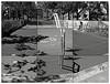 ALAMEDA LINARES / Basquetbol I (ORANGUTANO / Aldo Fontana) Tags: chile regióndelmaule linares septimaregión maulesur ciudad city urban trees cancha basquetbol aldofontana flickr orangutano baloncesto basketball blackandwhite blancoynegro duotono canong10 canon