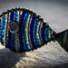 Pisces for Macro Monday #Zodiac (ciarametcalfe) Tags: fish blue pisces zodiac macromonday