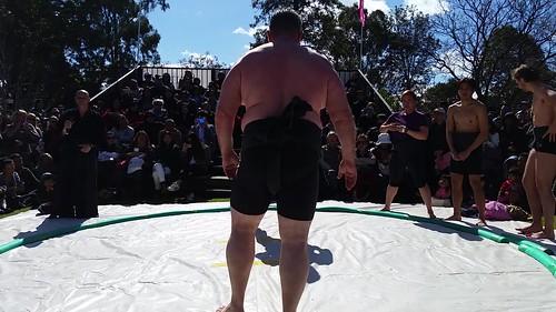 Sumo demonstration