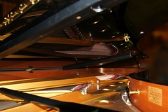 Steinway inside (Jurek.P) Tags: piano steinwaysons music jurekp sonya500