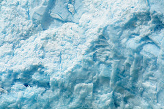 Chile, 2014. (semaone) Tags: chile cile patagonia sanrafael laguna glacier ghiacciaio iceberg seagull gabbiano