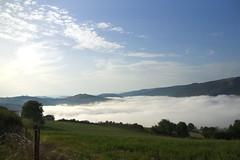A Connac au dessus de la vallée du Tarn (Sdine) Tags: tarn aveyron vallée valley brume mist france paysage landscape sonyalpha sony