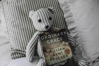 ~Teddy Likes Reading~