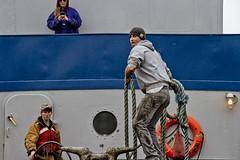 r_170903356_beat0053_a (Mitch Waxman) Tags: 2017greatnorthrivertugboatrace 42ndstreet buchanan donjon fireboatjohnjharvey hudsonriver midtown millerslaunch mistert newyorkcity newyorkharbor tugboat workingharborcommittee newyork