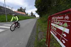 Sykkelveg Stavne 0034 (Miljøpakken) Tags: miljøpakken trondheim sykkelveg sykling sykkelrute syklister myke trafikanter