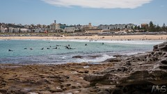 Sandstone (hotdipper) Tags: bondibeach cityscape nsw places situations sydney ocean platform rockpool sandstone surfer northbondi newsouthwales australia au