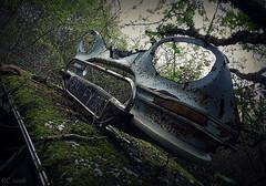 Le masque. (Renaud49) Tags: citroën ami 6 épave rouille abandonné voiture