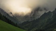 The Gate (Netsrak) Tags: gebirge berge trettachtal trettach bayern oberstdorf wald baum bäume alpen natur nebel mist fog