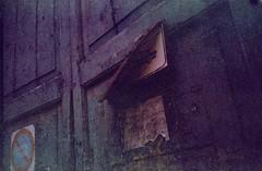 0637_16-05-2017_Olympus SUPERTRIP exp COLORAMA ISO200 film_Lecce_trip to Puglia_516 (nefotografas) Tags: triptoitaly apulia puglia salento lecce olympus supertrip expired colorama iso200 film