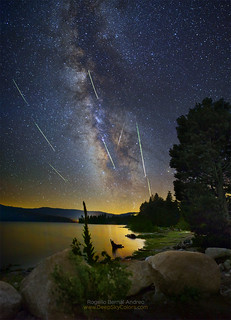 Perseids by the Lake