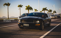 Ford Mustang Bullitt (Natty France) Tags: petrolheadcarmeeting ford mustang bullitt fordmustangbullitt canon6d florianópolis avbeiramarnorte floripa santacatarina sc brasil brazil hoyafilter