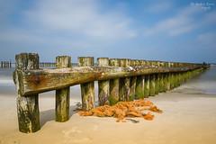 Wangerooge Strand (ab-planepictures) Tags: wangerooge strand deutschland natur landschaft beach germany niedersachsen landscape