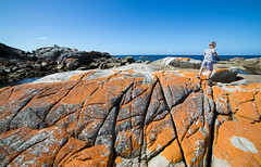 Wonder and Exploration (Keith Midson) Tags: binalongbay tasmania coastal coast rocks shoreline shore boy exploring explore wonder