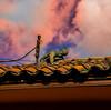 Derrotado en sus ruinas (Telaar de los sueños) Tags: fotografia photography airelibre red rojo atardecer edicion cielos sky hombre estatua casas bogota colombia contraste contrast