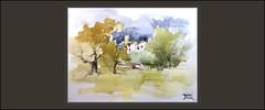 SANT VICENÇ DE CALDERS-PINTURA-EL VENDRELL-ACUARELA-PAISATGES-POBLES-TARRAGONA-AQUAREL·LES-ARTISTA-PINTOR-ERNEST DESCALS- (Ernest Descals) Tags: santvicençdecalders acuarela acuarelas acuarelistas watercolor watercolors watercolour watercolorist aquarel·la aquarel·les aquarel·listes pintura pintar pintando pinturas pintures cuadros sugerencias plasticas plastica plasticos quadres art arte artwork paisatge paisatges paisaje paisajes poble pobles elvendrell costadorada costadaurada village landscape landscaping pueblo pueblos pequeños arboles cielo arbres cel sky paint pictures pintores pintors pintor painter painters paintings painting tarragona catalunya ctaluña catalonia catalans catalanes torre torreon cases casas ernestdescals artistas artistes artist artista
