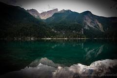 Tovel Lake (Alessandra Giovannini) Tags: lake mountain mountains dolomiti dolomites trees tree trentino lago tovel reflections riflessi