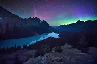 'Bonus Aurora' - Peyto Lake, Banff