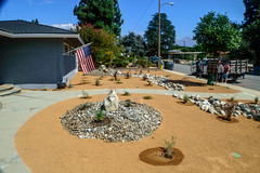 DLS Best Low Water Landscaping Drought Tolerant Resistant Service in Rancho Cucamonga California CA (funny.pictures) Tags: landscape landscaping drought tolerant droughttolerant claremont claremontca claremontcalifornia dlslandscape dlslandscaping lowwater claremonthomes claremonthome claremonthouse claremonthouses inlandempire claremontlandscaping claremontlandscape