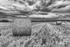 Straw Bale Mono (robinta) Tags: straw agriculture farming field pastoral mono monochrome blackwhite crop clouds sky pentax sigma ks1 sigma1770 cleadon england ngc pentaxart countryside landscape rural