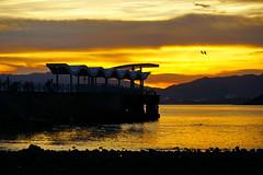 黃昏之光   Evening dusk (C. Alice) Tags: water clouds sky summer sea seashore 2016 hongkong ilce6000 sony a6000 sonya6000 sonysel1670zcarlzeissvariotessart tessar zeiss carlzeiss beach sunset orange asia aatvl01
