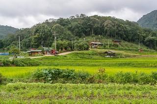 doi inthanon - thailande 64