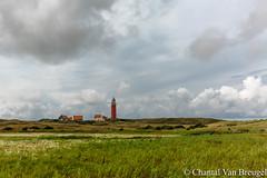 Vuurotoren Texel (Chantal van Breugel) Tags: landschap texel vuurtoren zomer zee strand noordholland eierland juli 2017 canon5dmark111 canon1635