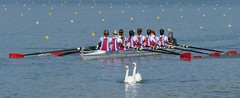 And the winner is ??? (andycam78) Tags: sport watersport water rowing rowingregatta panasonic panasonicfz1000 manteslajolie
