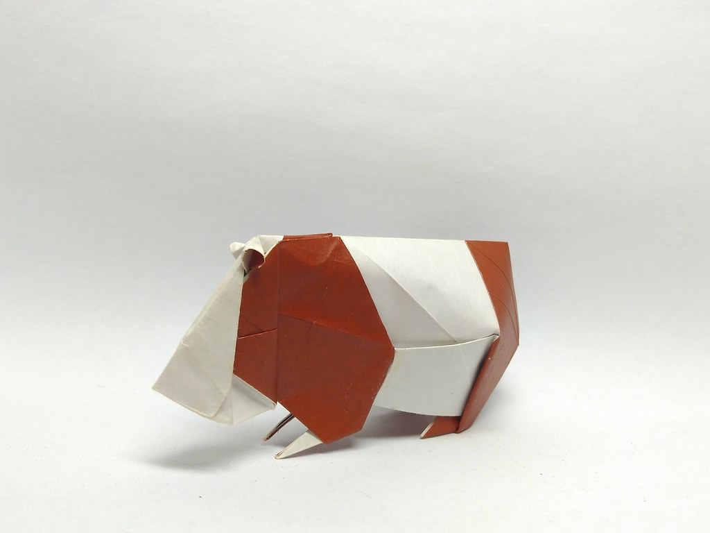 The World's Best Photos of origami and pig - Flickr Hive Mind - photo#30