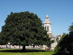 Trinity College (M_Strasser) Tags: trinitycollege trinity college olympusomdem1 olympus ireland irland dublin