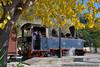 Pelion, Greece (Nikos Kantiris) Tags: ose kantiris pelion tree yellow train steam loco locomotive οσε καντηρησ πηλιο δενδρα κιτρινο τραινα τρενα ατμοσ ατμομηχανη στενο narrow railway railroads
