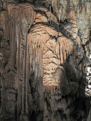 Dag 4  Grotten van Postojna (Truus) Tags: postojna kroatie