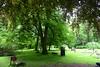 DAV_3565 Zámecká Zahrada