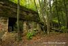 Wolf's Lair bunker, Poland (Anna Calvert Photography) Tags: poland polska forest trees nature landscape wolf'slair hitlers lair nazi bunkers secondworldwar german gierloz ketrzyn