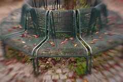Happy Autumn Bench Monday! (suzanne~) Tags: bench composer35 lensbaby westpark autumn fall leaf blur munich germany