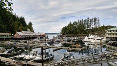 The marina in Telegraph Cove. (DJ's Photography@dj777_100er Always Catching Up) Tags:
