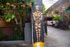 DSC_4175 Shoreditch London Rivington Street Artwork Otto Schade Street Artist (photographer695) Tags: shoreditch london street artwork rivington otto schade artist