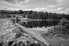 Codbeck (ptomphotos) Tags: nature yorkshire reflection water lines line leadin landscape blackandwhite