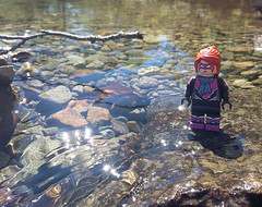 Cats don't like water (Catanas) Tags: speedcat lego lake district photography nature river scenic serene lobster