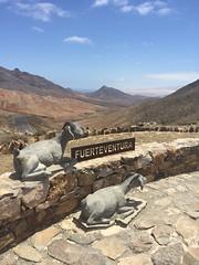 A view of the south west coast in the region of Pájara, Fuerteventura. (gallos72) Tags: pájara lapared view fuerteventura