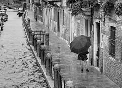 Rain (frank.gronau) Tags: wasser regenschirm regen italy italien venedig woman beautiful girl frau white black weis schwarz sonyalpha7 gronau frank