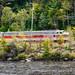 Zombie Rail
