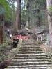 Murou-ji (toshto) Tags: 室生寺 奈良 寺院 仏教 真言宗 国宝 女人高野 morouji nara japan temple buddhism shingonshu nationaltreasure woman'skoya