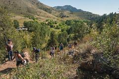 _JRK1080.jpg (CAP VRC - University of Colorado-Denver) Tags: planing murp plantsecology lairothebearpark plants parks mouintains fall september austintroy