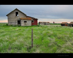 Cadillac Dreams (Gordon Hunter) Tags: rural country prairie farm fence post wire house home shack grain elevator evening red green field grass view clouds cadillac sk saskatchewan canada gordon hunter nikon d5000 summer