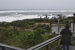 Out to Meet the Storm (brucetopher) Tags: storm hurricane surf dangerous windy wind gale tropicalstorm blow gusts winddriven beach waves power force forceful wash breakers loud steps stairs landing walkway path boardwalk ocean sea rough hazardous cloudy woman man girl boy coat