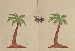 il giardino proibito (Rino Alessandrini) Tags: accesso chiuso bloccato palme disegno divieto closed lock palm design prohibited catene chains
