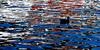 Ente - Locarno (uhu's pics) Tags: suisse switzerland schweiz tessin lagomaggiore locarno white weiss red rot blue blau colourful farbig duck ente water wasser 90mm xpro2 xpro fujinon fuji fujifilm